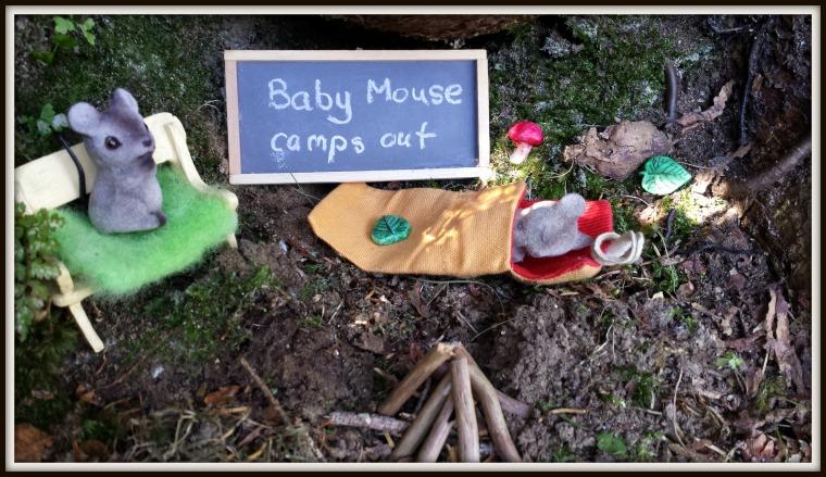 babymousecamping