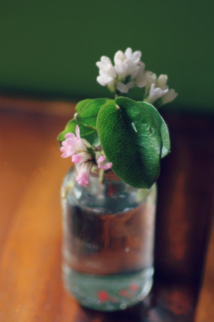 mayflowerjar